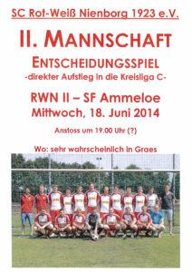 Plakat_2014_II_Relegation